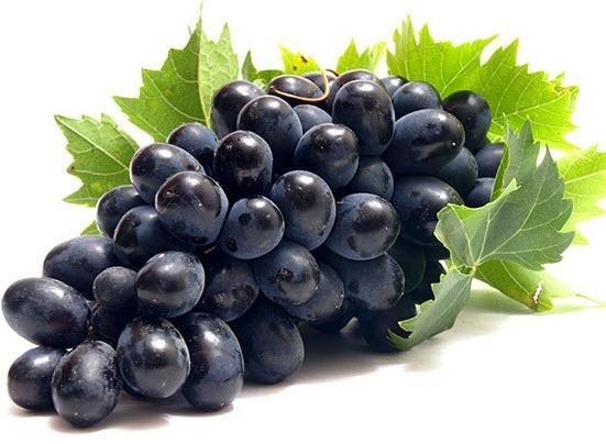 Сорта винограда для вашего сада