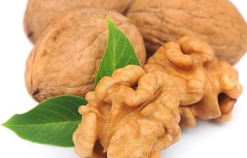 Целитель грецкий орех