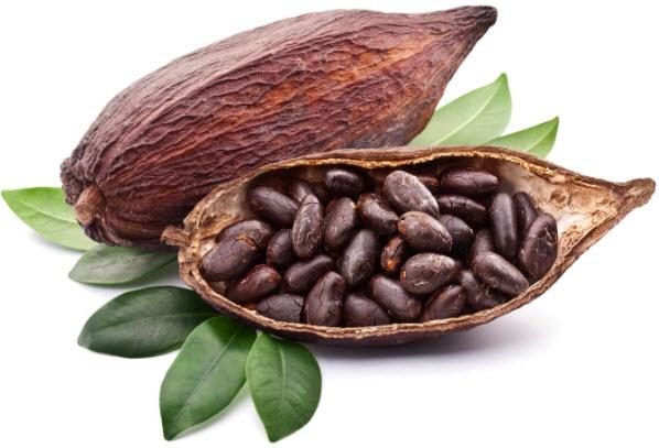 Какао-бобы - вред и польза