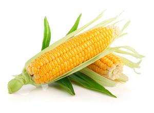 Кукуруза - вред и польза