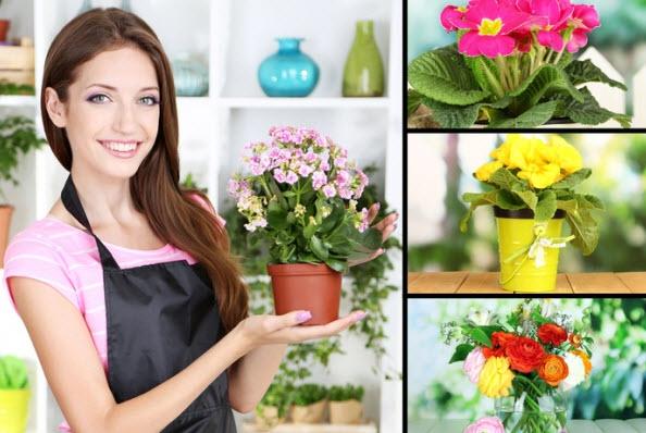 Цветы приносящие счастье в дом