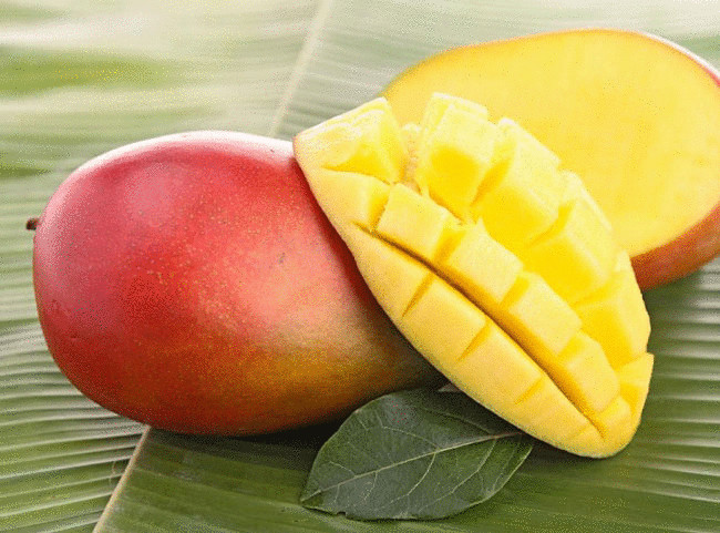 Чем полезно манго для человека