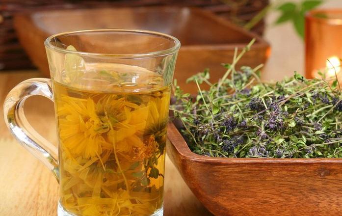Лучшие травы для здоровья печени