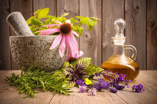 Семь доступных растений, которые избавят от зимних простуд