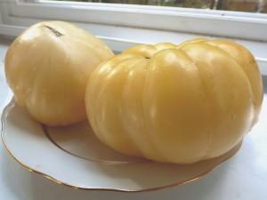 Белоплодные томаты