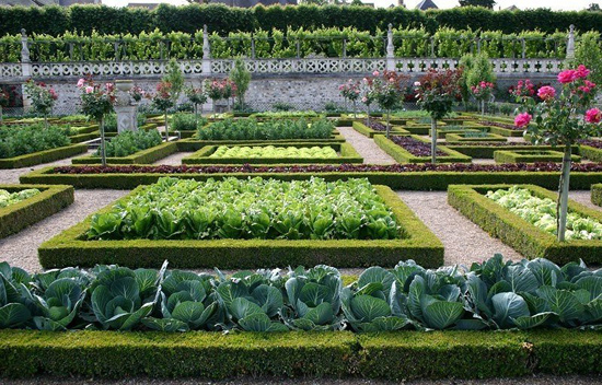 Безопасные удобрения для огорода и сада