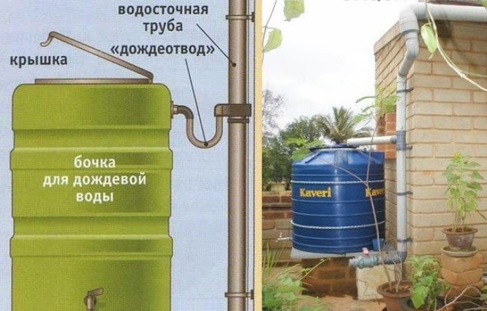 Как собрать дождевую воду на участке
