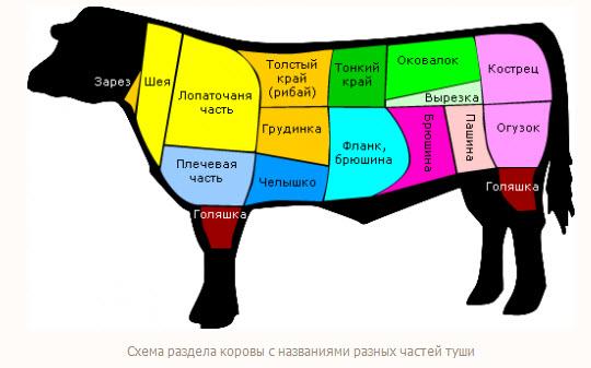 Как забить корову - вскрытие и резка