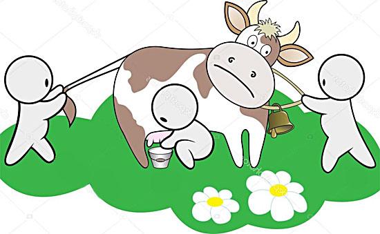 Современная молочная ферма: с чего начать