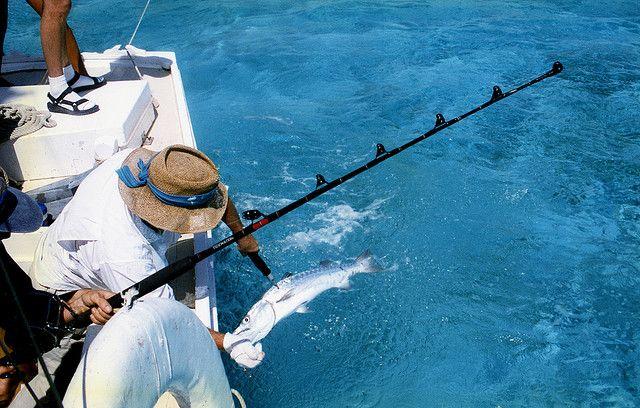 Рыбалка на море, какая она