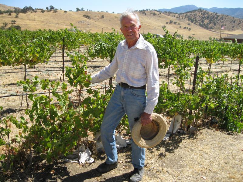 Как пересадить виноград на другое место весной