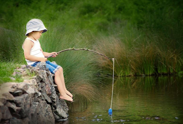 Какую рыбу ловить в июне: сом, сазан, карась, окунь, щука, лещ и карп