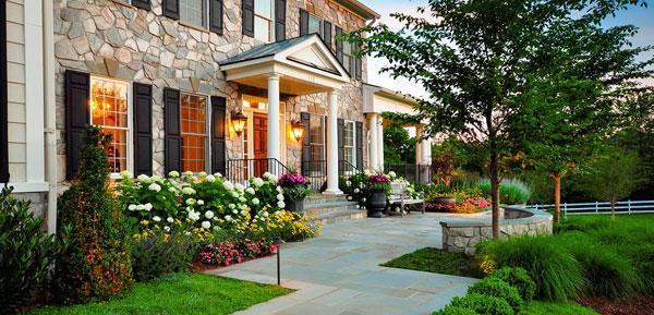 Цветы для дачи и загородного дома