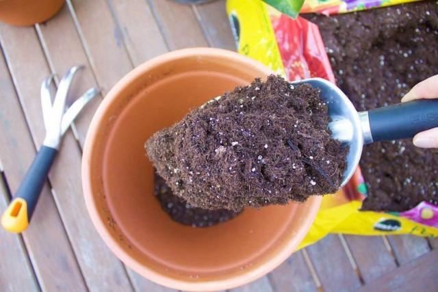 Готовая почва для комнатных растений в пакете