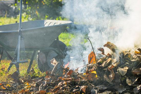 Многие дачники сжигают листья на огороде или в сад