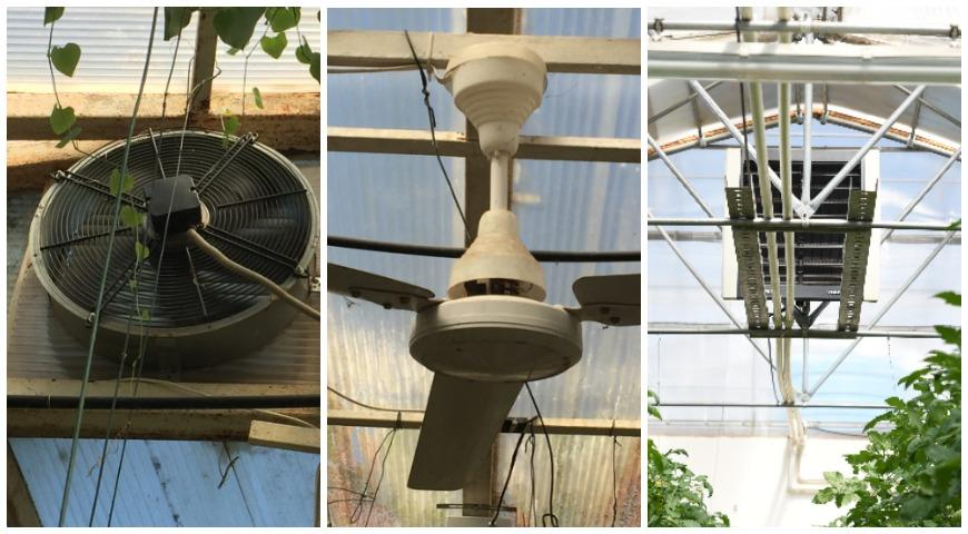 вентиляторы в теплице