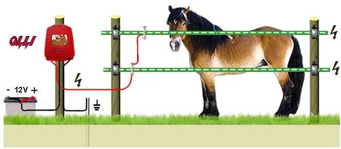 Электроизгородь для всех видов животных