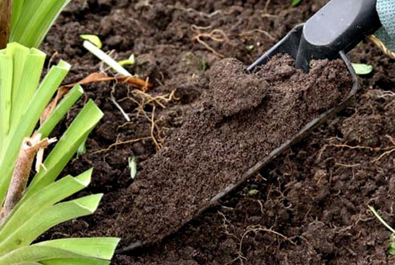 средства от вредителей растений