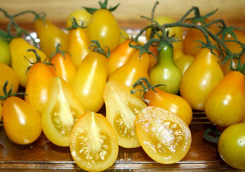 томат Груша желтая