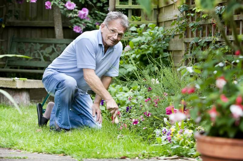Право владения приусадебным участком: строить, выращивать, разводить