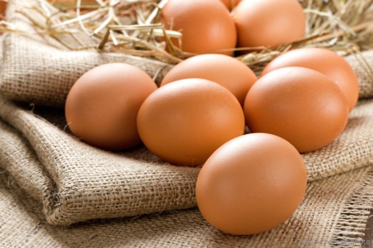 Куриное яйцо, все ли мы знаем?