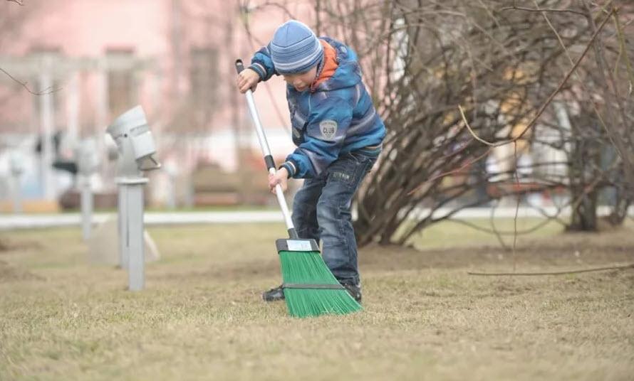 Как организованно собирать мусор с пользой для природы и собственного двора