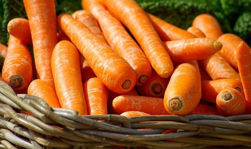 Методы хранения моркови