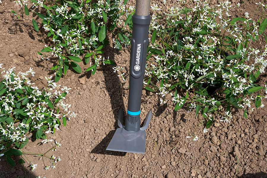 Как подготовить почву к посадке овощных культур