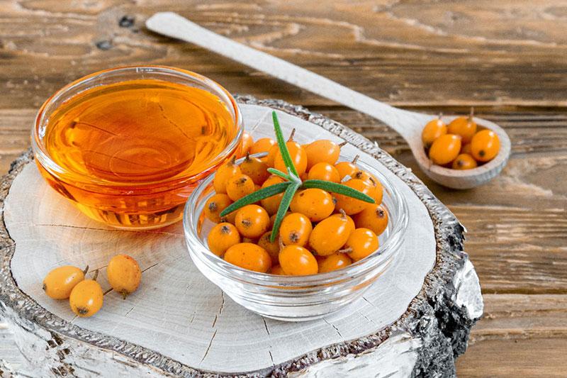 Чем полезно облепиховое масло и как его приготовить