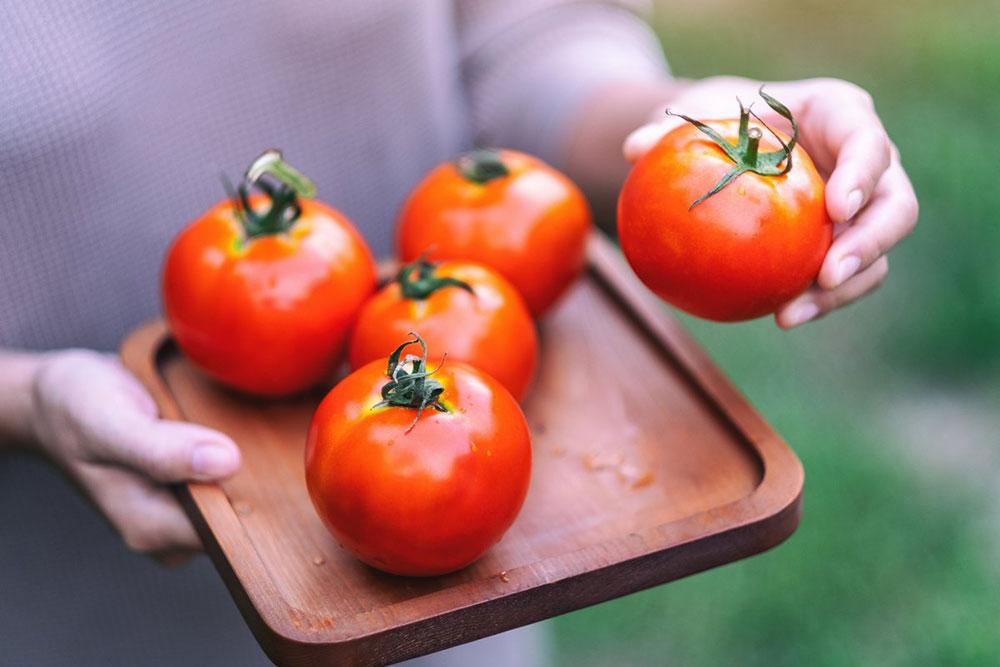Сорта помидоров которые можно хранить до весны