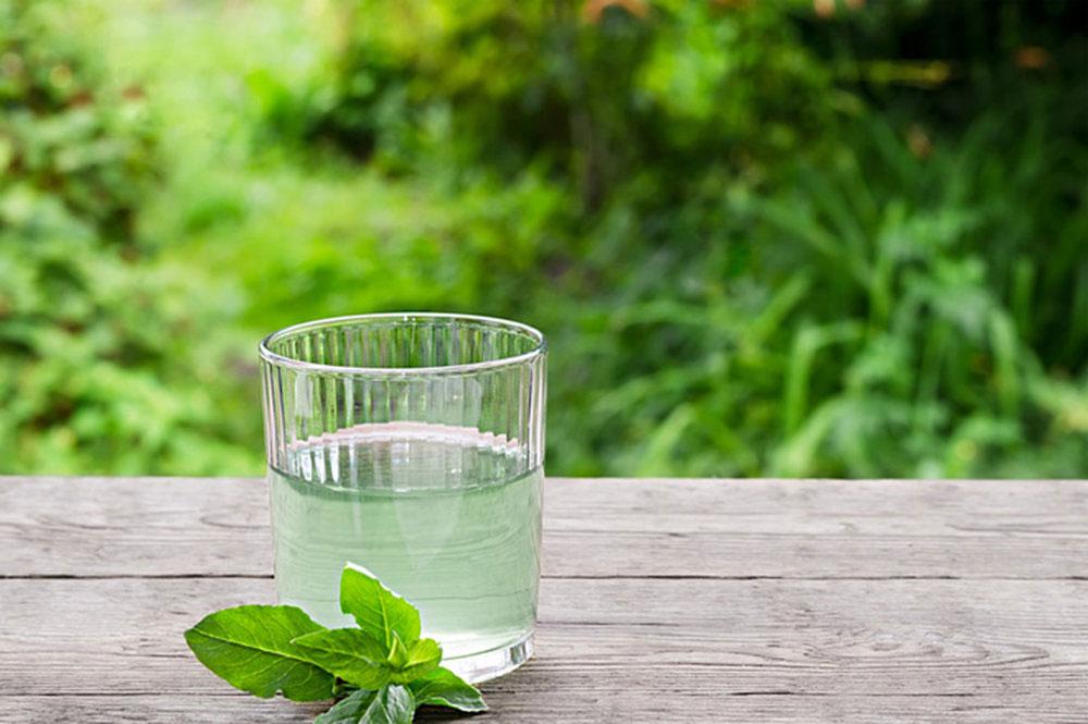 Березовый сок с мятой