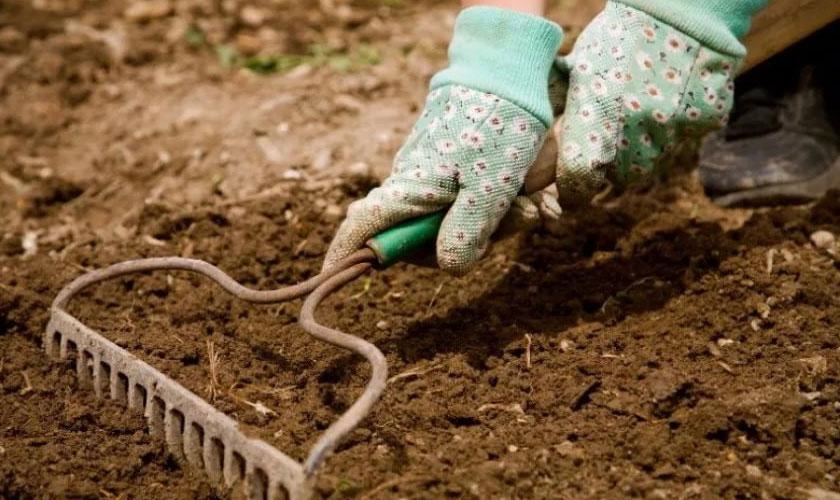 Рыхление земли граблями